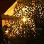 Café_Nachtaufnahme
